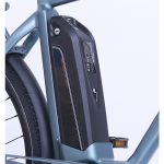 WEE E-Bike Carnelian Samsung Akku