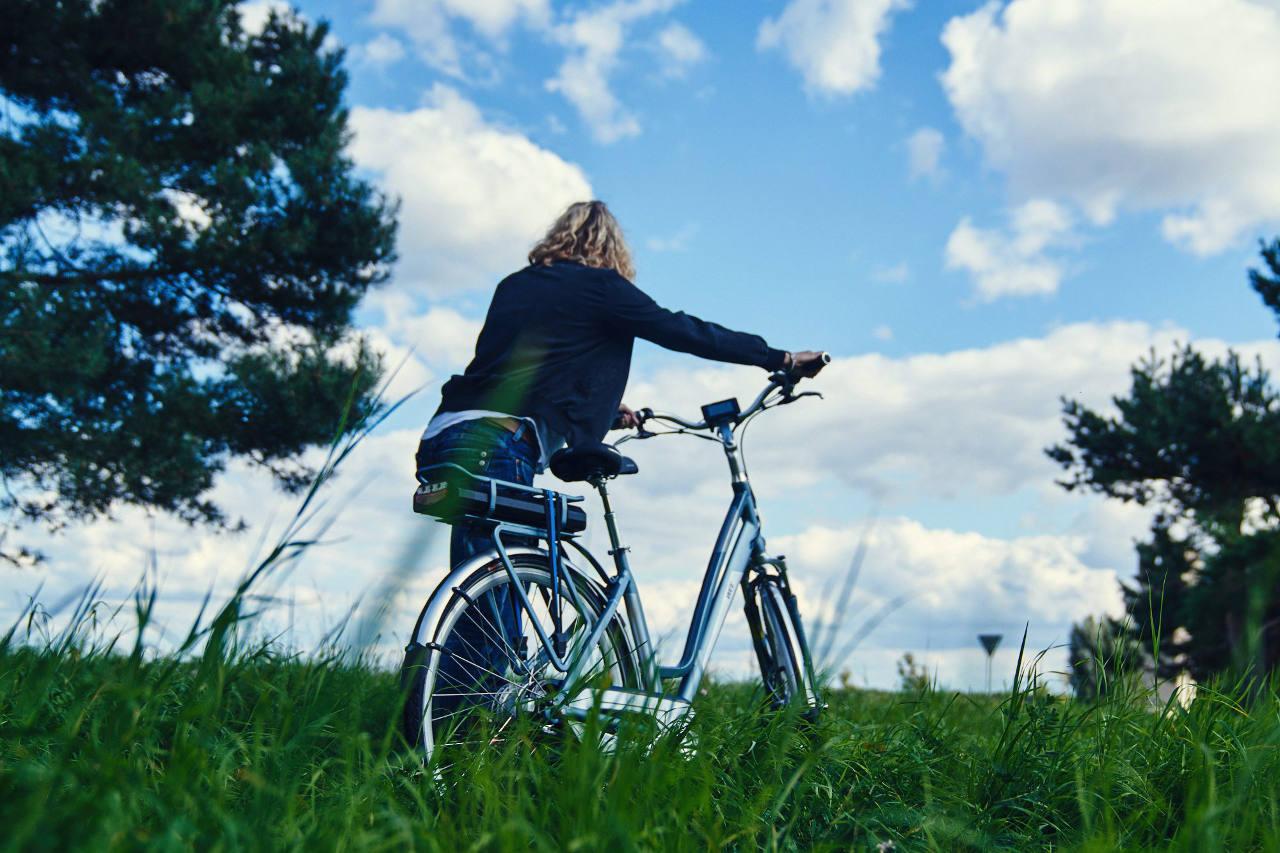WEE E-Bike Bosch